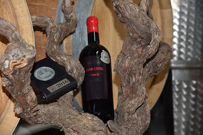 Fles rode wijn in boom Tenute Gabellone